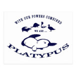 We are Platypus Post Card