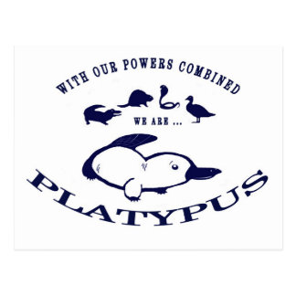 We are Platypus Postcard