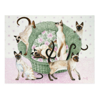 We are Siamese if you please Postcard