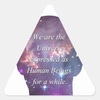 We are the Universe Triangle Sticker