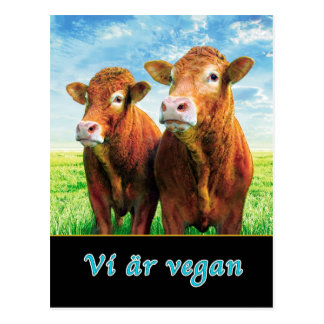 We are vegan postcard