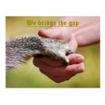 WE BRIDGE THE GAP POST CARDS