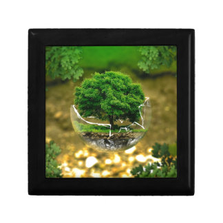 We Can be the Change & Save The Earth! Gift Box