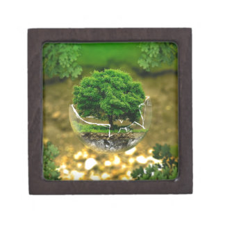 We Can be the Change & Save The Earth! Keepsake Box