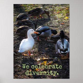 We Celebrate Diversity Poster Print