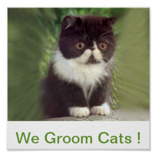 We Groom Cats Sign