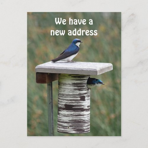 We Have a New Address Announcement Postcard