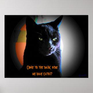 We have catnip print