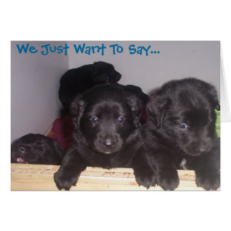 We just want to say greeting card