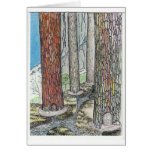We Live In The Trees Greeting Card