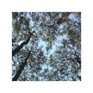 'We Love Aspen' 12 x 12 Canvas