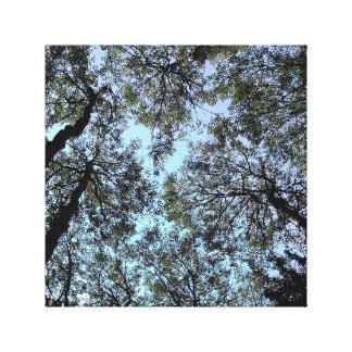 'We Love Aspen II' 12 x 12 Canvas