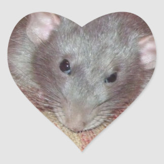 we love Biff rat stickers