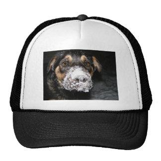 We Love it Here ! Trucker Hat