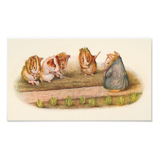 We Love Our Little Garden Guinea Pigs Photo Print