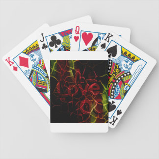 We love bicycle playing cards