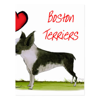 we luv boston terriers from tony fernandes postcard