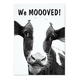 We Moved MOOO Cow Housewarming Party Card