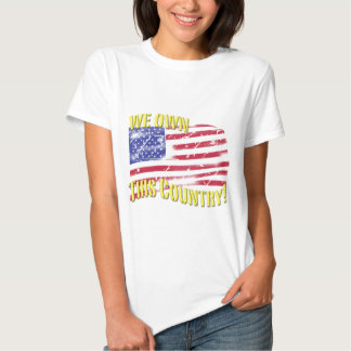 We own this Country! patriotic design T-shirt