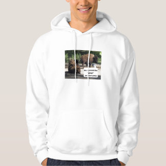 "We represent the ""other"" political party! hooded pullover"