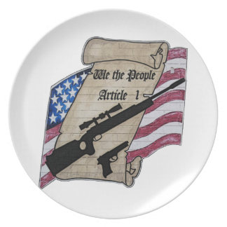 ( We The People ) Article 1 2nd Amendment Guns and Melamine Plate
