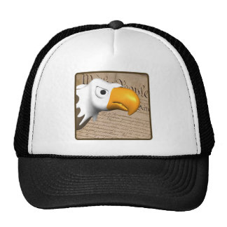 We The People Hats