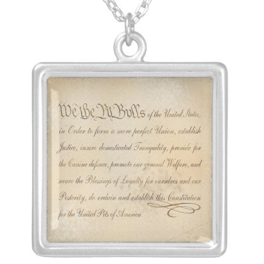 We the Pit Bulls... Silver Plated Necklace