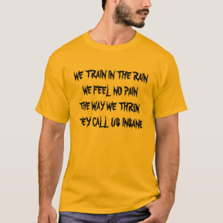 WE TRAIN IN THE RAINWE FEEL NO PAINTHE WAY WE T... T-Shirt