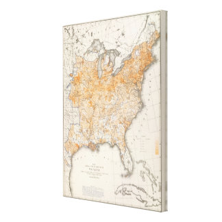 Wealth Distribution, Statistical US Lithograph Gallery Wrap Canvas