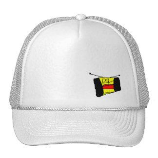 Wear the stereo sudeways hat