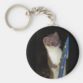 Weasel, Short-tailed Basic Round Button Keychain