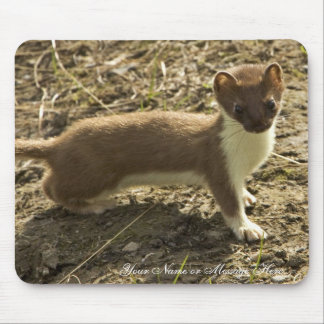 Weasel, Short-tailed Mouse Pad