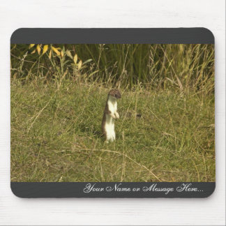 Weasel, Short-tailed Mouse Pads