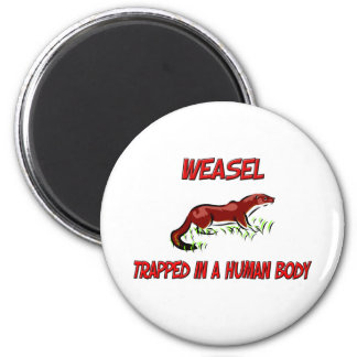Weasel trapped in a human body fridge magnet