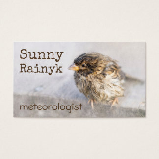 Weather Forecast Funny Customizable Business Card