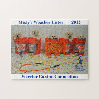 Weather Litter Bucket puzzle
