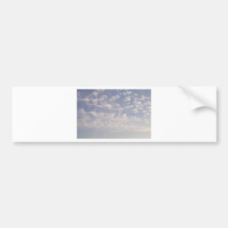 Weather Watcher Bumper Sticker