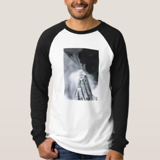 Weathered Angel Praying Photo T-Shirt
