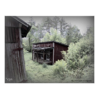Weathered Chicken Coop Large Print