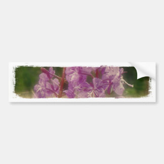 Weathered Fireweed; No Greeting Car Bumper Sticker