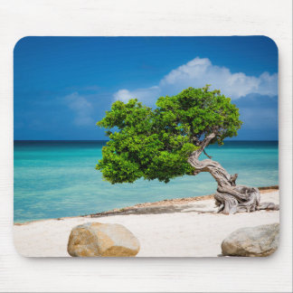 Weathered Fofoti tree Mouse Pad