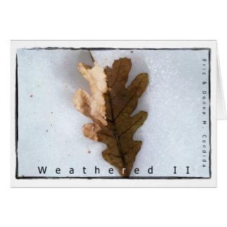 Weathered II Greeting Card