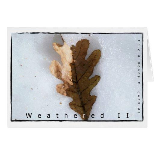 Weathered II Cards