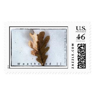 Weathered II Postage