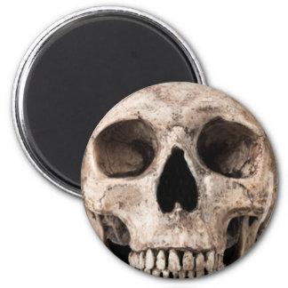 Weathered Old Skull Magnet