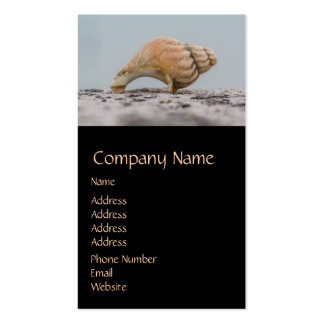 Weathered Sea Shell Double-Sided Standard Business Cards (Pack Of 100)