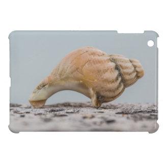 Weathered Sea Shell Case For The iPad Mini