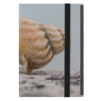 Weathered Sea Shell iPad Mini Case