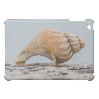 Weathered Sea Shell iPad Mini Cases