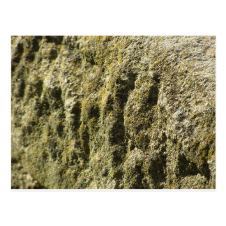 Weathered stone with lichen and moss background postcard
